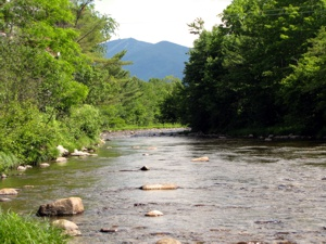 Our view of the Gale River